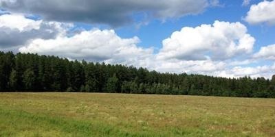 Фотографии и отзывы о коттеджном поселке «Ягодный 2» (Можайский р-н МО)
