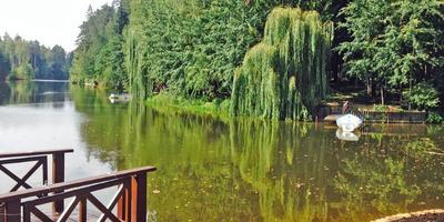 Фотографии и отзывы о коттеджном поселке «Грибово Таун» (Одинцовский р-н МО)