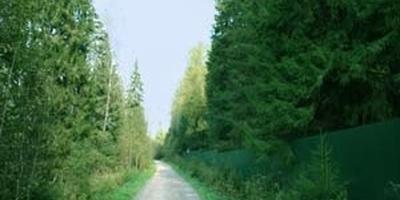 Фотографии и отзывы о коттеджном поселке «Холмы» (Солнечногорский р-н МО)