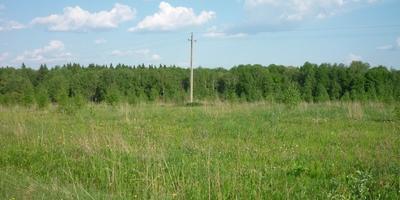 Фотографии и отзывы о коттеджном поселке «Радованье» (Клинский р-н МО)