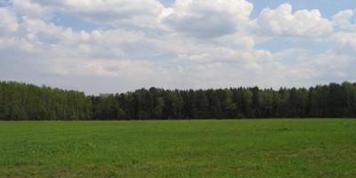 Фотографии и отзывы о коттеджном поселке «Ромашково» (Ступинский р-н МО)