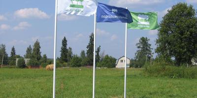 Фотографии и отзывы о коттеджном поселке «Подколокольный» (Клинский р-н МО)