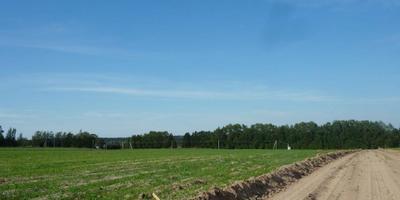 Фотографии и отзывы о коттеджном поселке «Храброво» (Дмитровский р-н МО)