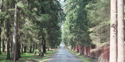 Фотографии и отзывы о коттеджном поселке «Чистые пруды-3» (Пушкинский р-н МО)