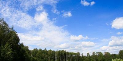Фотографии и отзывы о коттеджном поселке «Фантазия» (Солнечногорский р-н МО)