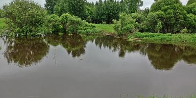 Фотографии и отзывы о коттеджном поселке «Комарово» (Клинский р-н МО)