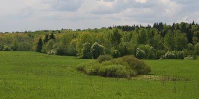Фотографии и отзывы о коттеджном поселке «Кудрино» (Сергиево-Посадский р-н МО)