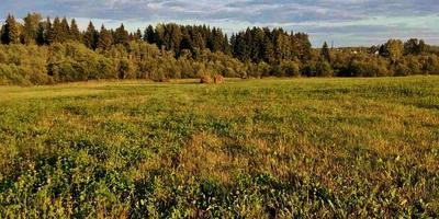 Фотографии и отзывы о коттеджном поселке «Аквамарин» (Клинский р-н МО)