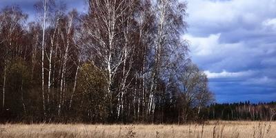 Фотографии и отзывы о коттеджном поселке «Загородный» (Наро-Фоминский р-н МО)
