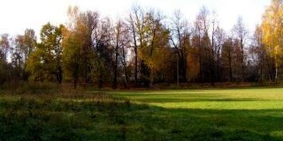 Фотографии и отзывы о коттеджном поселке «Горбово» (Балашихинский р-н МО)