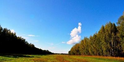 Фотографии и отзывы о коттеджном поселке «Заповедное» (Сергиево-Посадский р-н МО)