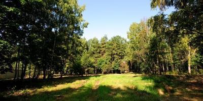 Фотографии и отзывы о коттеджном поселке «Семья» (Мытищинский р-н МО)