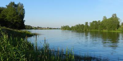 Фотографии и отзывы о коттеджном поселке «Селинские дачи» (Клинский р-н МО)