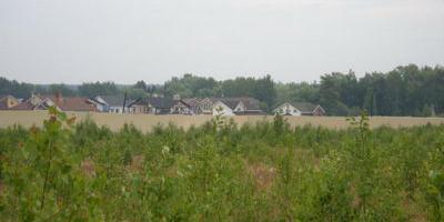 Фотографии и отзывы о коттеджном поселке «Луговой» (Пушкинский р-н МО)