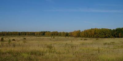 Фотографии и отзывы о коттеджном поселке «Пахомово» (Шаховской р-н МО)