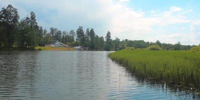 Фотографии и отзывы о коттеджном поселке «Костино» (Пушкинский р-н МО)