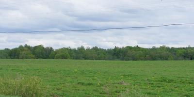 Фотографии и отзывы о коттеджном поселке «Русалкино» (Клинский р-н МО)