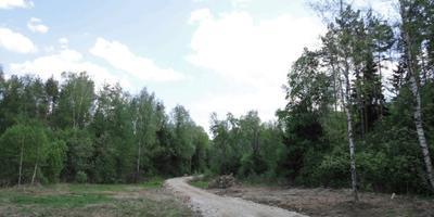 Фотографии и отзывы о коттеджном поселке «Янтарный берег» (Чеховский р-н МО)