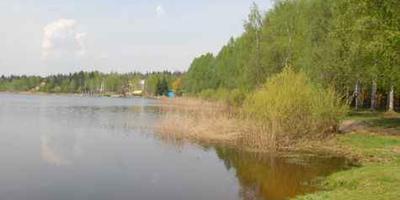 Фотографии и отзывы о коттеджном поселке «Лесное» (Серпуховский р-н МО)