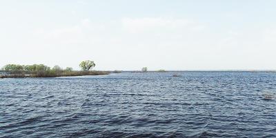 Фотографии и отзывы о коттеджном поселке «Москворечье-2» (Раменский р-н МО)