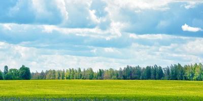Фотографии и отзывы о коттеджном поселке «Вишенки» (Рузский р-н МО)