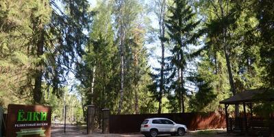 Фотографии и отзывы о коттеджном поселке «Ёлки» (Клинский р-н МО)