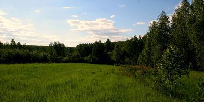 Фотографии и отзывы о коттеджном поселке «Радужный-2» (Серпуховский р-н МО)