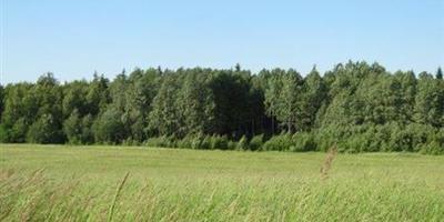 Фотографии и отзывы о коттеджном поселке «Кузнецы» (Ломоносовский р-н ЛО)