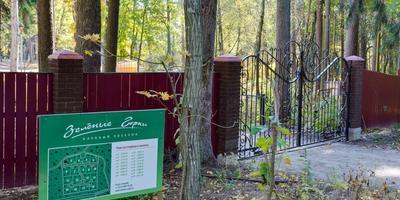 Фотографии и отзывы о коттеджном поселке «Зеленые Горки» (Курортный р-н ЛО)