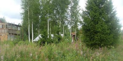 Фотографии и отзывы о коттеджном поселке «Рябово» (Тосненский р-н ЛО)
