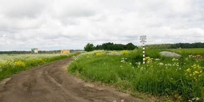 Фотографии и отзывы о коттеджном поселке «Видное» (Ломоносовский р-н ЛО)