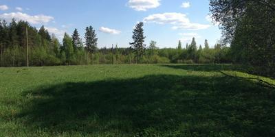 Фотографии и отзывы о коттеджном поселке «Толмачево» (Лужский р-н ЛО)