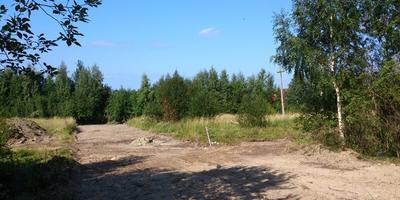 Фотографии и отзывы о коттеджном поселке «Александровское» (Ломоносовский р-н ЛО)