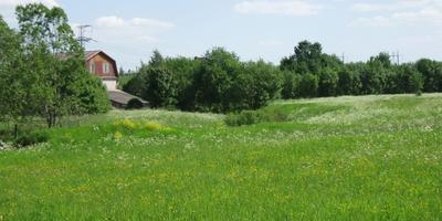 Фотографии и отзывы о коттеджном поселке «Алакюля» (Ломоносовский р-н ЛО)
