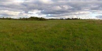 Фотографии и отзывы о коттеджном поселке «Малиновка» (Ломоносовский р-н ЛО)