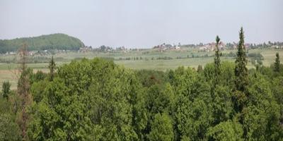 Фотографии и отзывы о коттеджном поселке «Демидовская усадьба» (Гатчинский р-н ЛО)