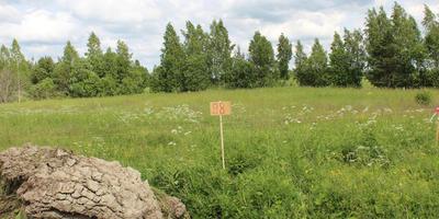 Фотографии и отзывы о коттеджном поселке «Королек» (Ломоносовский р-н ЛО)