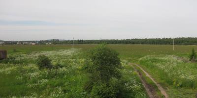 Фотографии и отзывы о коттеджном поселке «Родник» (Гатчинский р-н ЛО)