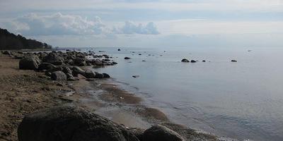 Фотографии и отзывы о коттеджном поселке «Академические Дачи» (Курортный р-н ЛО)