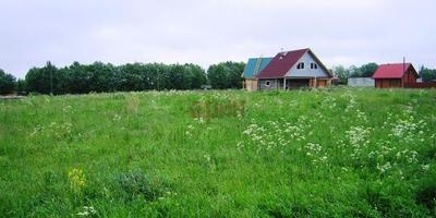 Фотографии и отзывы о коттеджном поселке «Новое Хинколово» (Гатчинский р-н ЛО)