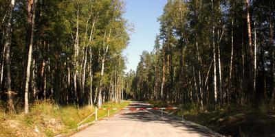 Фотографии и отзывы о коттеджном поселке «Озеро Отрадное» (Приозерский р-н ЛО)