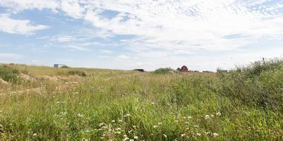 Фотографии и отзывы о коттеджном поселке «Глуховское Раздолье» (Ломоносовский р-н ЛО)