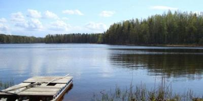 Фотографии и отзывы о коттеджном поселке «Осельки» (Всеволожский р-н ЛО)
