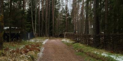 Фотографии и отзывы о коттеджном поселке «Майнила» (Выборгский р-н ЛО)