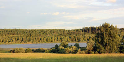 Фотографии и отзывы о коттеджном поселке «Заполье» (Лужский р-н ЛО)