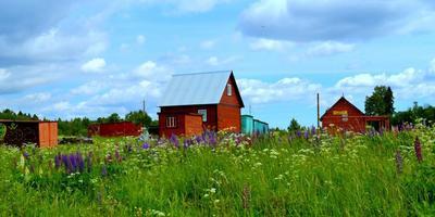 Фотографии и отзывы о коттеджном поселке «Финские холмы» (Всеволожский р-н ЛО)