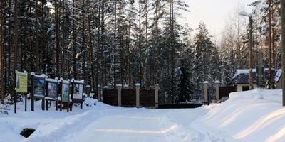 Фотографии и отзывы о коттеджном поселке «Репино» (Курортный р-н ЛО)