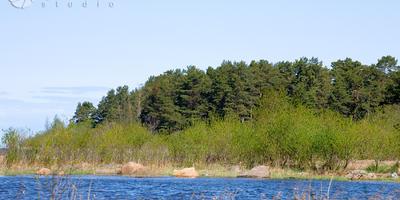 Фотографии и отзывы о коттеджном поселке «Ладожский Простор» (Волховский р-н ЛО)