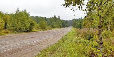 Фотографии и отзывы о коттеджном поселке «Любимые Просторы» (Тосненский р-н ЛО)