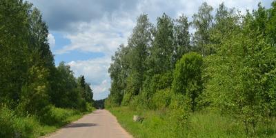 Фотографии и отзывы о коттеджном поселке «Рожновка» (Одинцовский р-н МО)